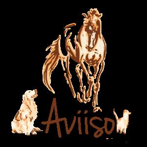 Aviiso sieraden met paardenhaar